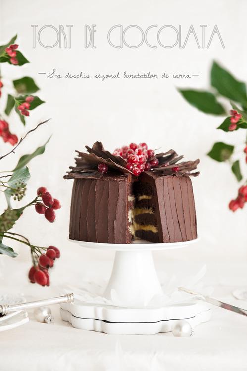 tort-revelion-01