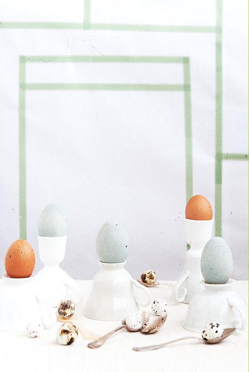 macarons-primavara-04