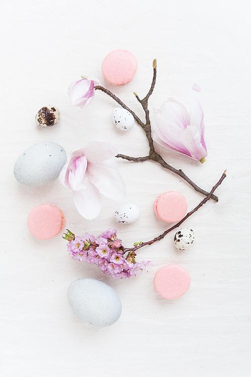 macarons-primavara-06
