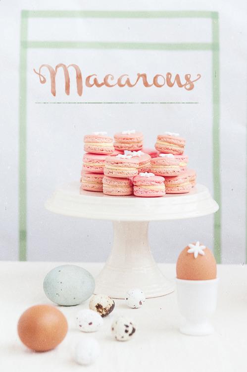 macarons-primavara-07