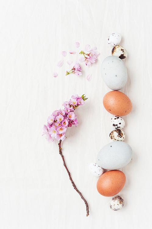 macarons-primavara-09