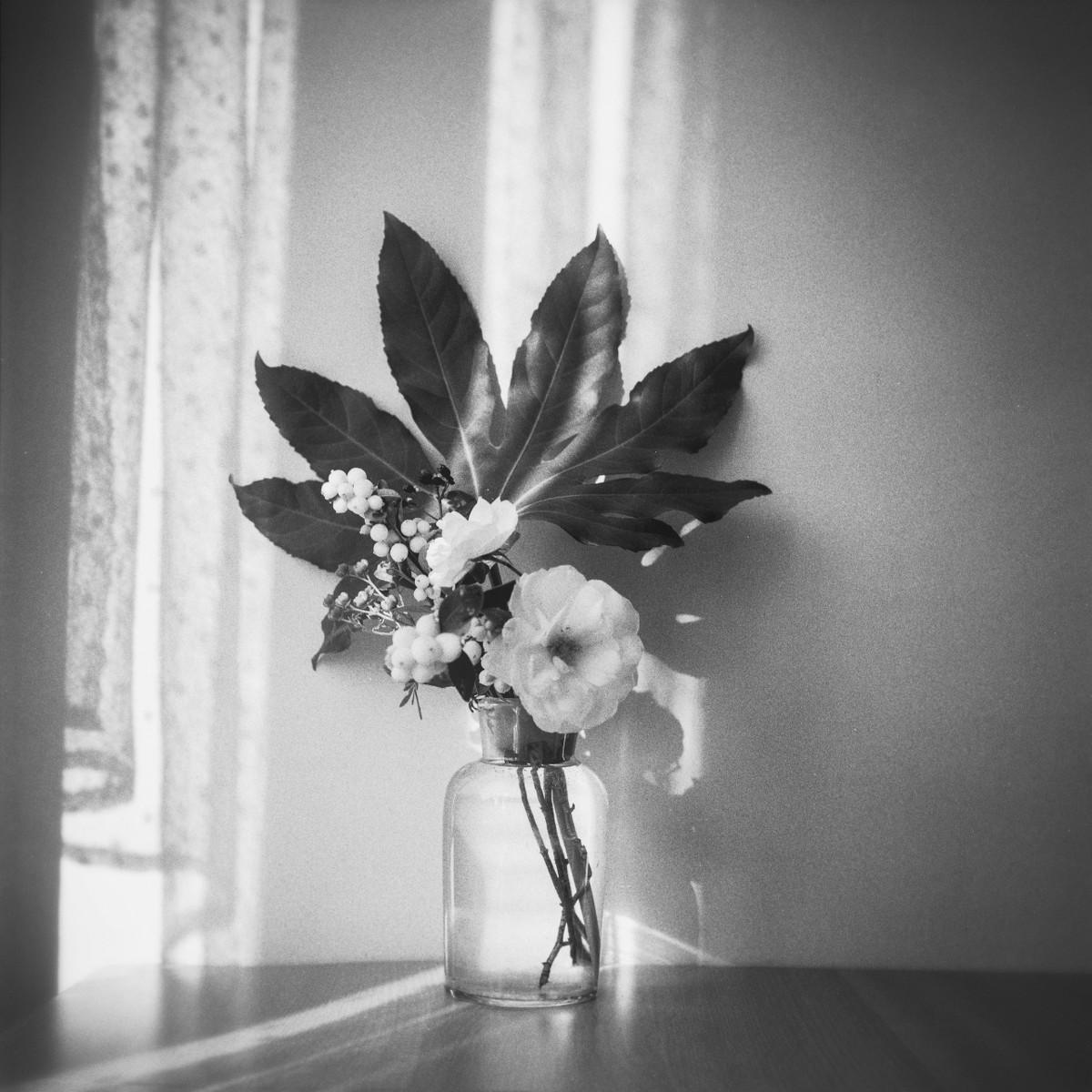 a-flower-01
